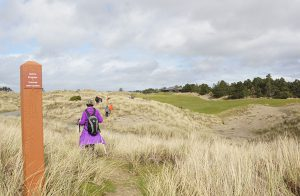 a hiker threads through shimmering beach grass on the Bandon Dunes Golf Resort trail system; A hand-hewn bench and rustic fence are the highlights of a vista point along the trail.