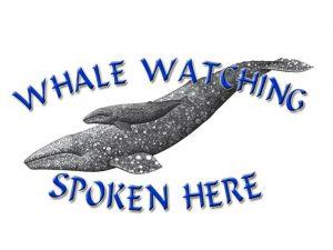 Whale Watching Spoken Here logo